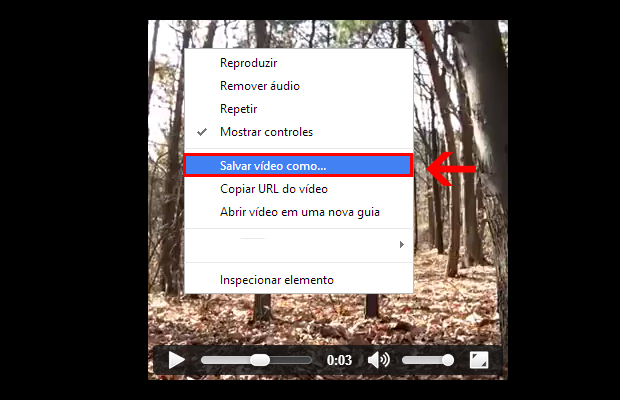 Como Baixar Video do Facebook