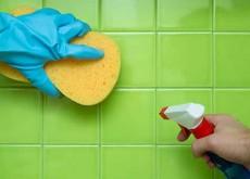 limpar casa borato de sódio