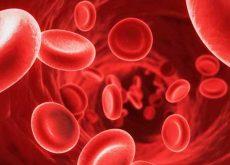 Elevar os Níveis de Colesterol Bom